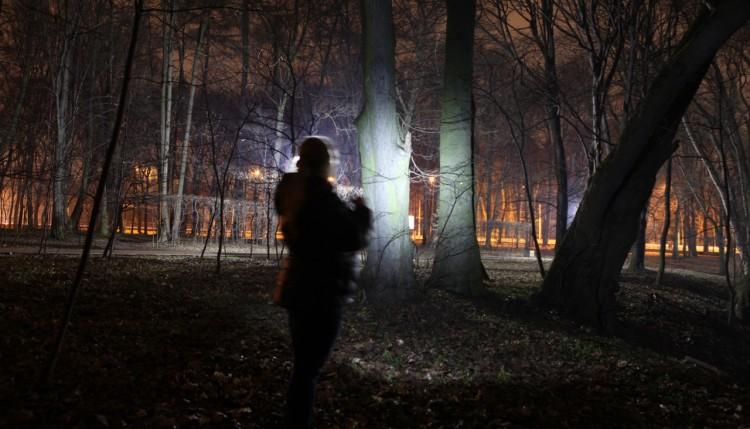 Striysky park