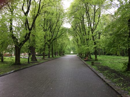 Стрыйский парк