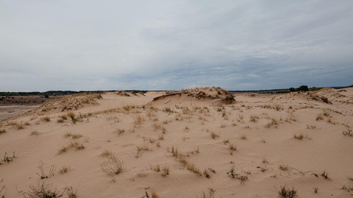 Кицевская пустыня