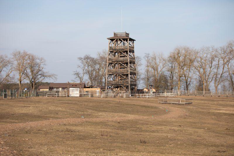 Парк Беремицкое в черниговской области